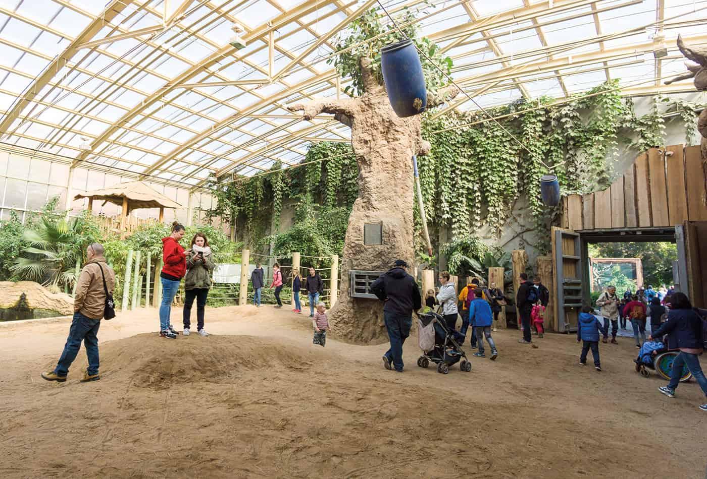 Sesam öffne dich im Zoo 2017 (Foto: Peter Bastian/Zoo Heidelberg)