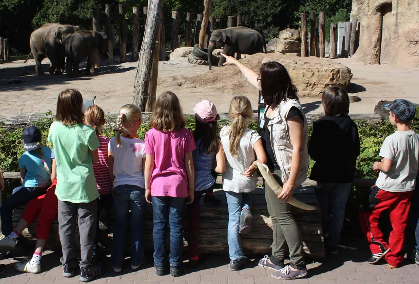 Zooschule beim Rundgang (Foto: Zooschule)