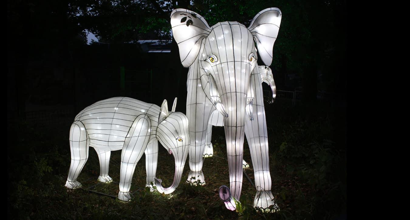 Leuchtender Elefant