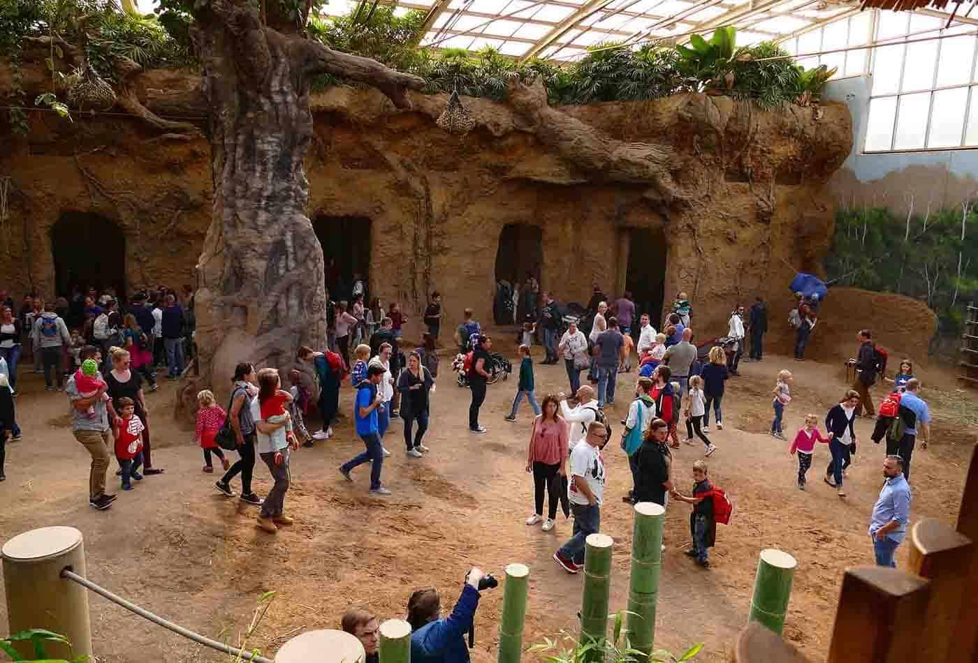 Sesam öffnet dich am 06. Oktober 2019 im Zoo Heidelberg (Foto: Zoo Heidelberg)