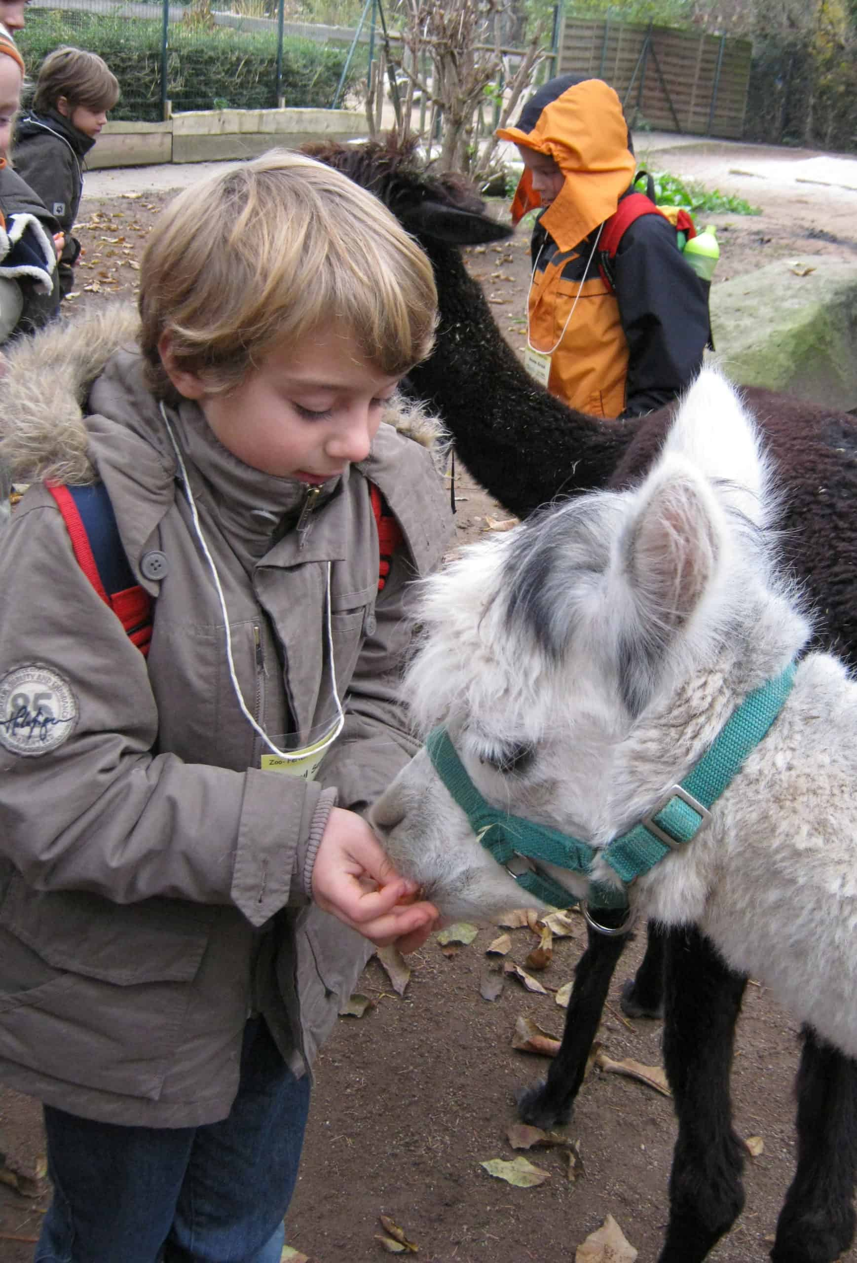 Ferienprogramm in den Faschingsferien (Foto: Zoo Heidelberg)