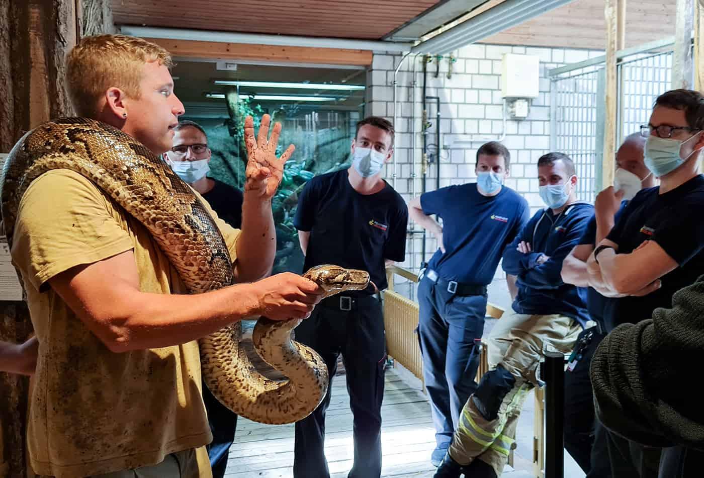 Tierpfleger Julian Oosterveen erklärt der Heidelberger Berufsfeuerwehr den richtigen Umgang mit Gefahrentieren. Im Praxisteil des Workshops konnten die Feuerwehrleute dem Tigerpython ganz nahekommen. (Foto: Zoo Heidelberg)